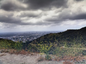 Los Angeles SNAP the MOON sm
