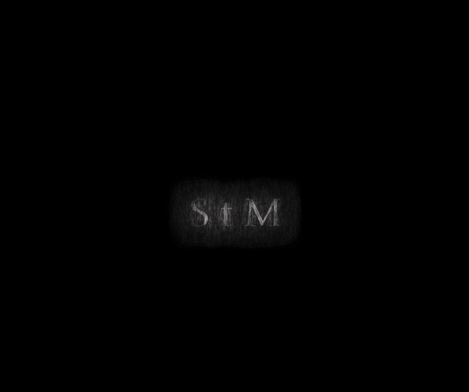 StM2 copy