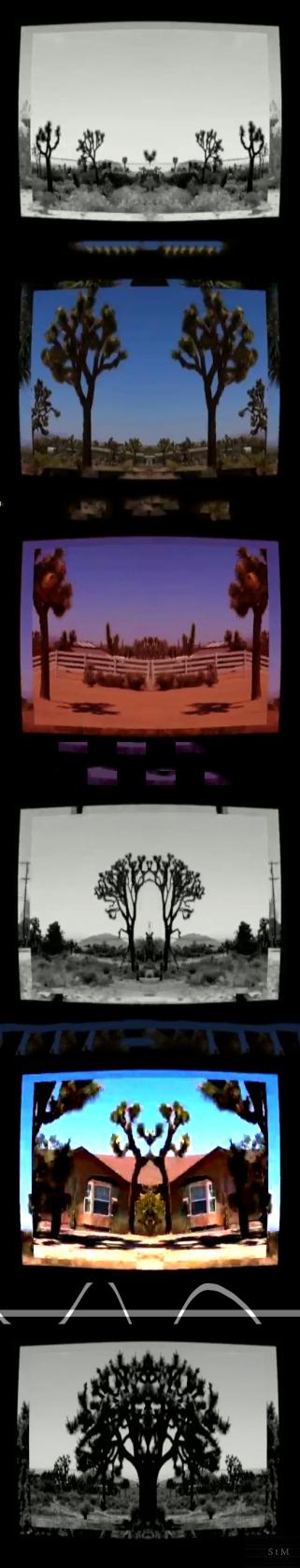 video screenshots YUCCA SNAPtheMOON